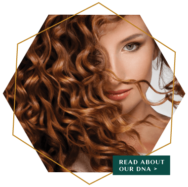 Buy CBD Professional Hair Care Online | EMERA Hair Care